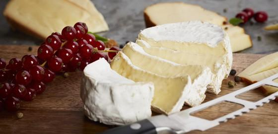 NÖM Gast Premiumkäse cremiger Leopold Camembert