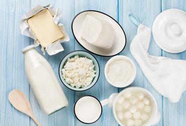 NÖM Gast Milchprodukte